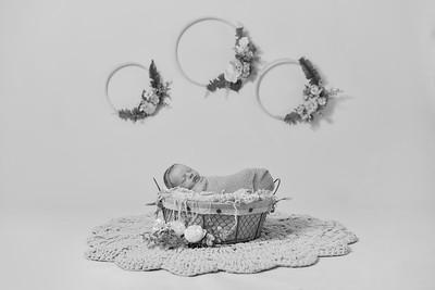 Maci Newborn-20