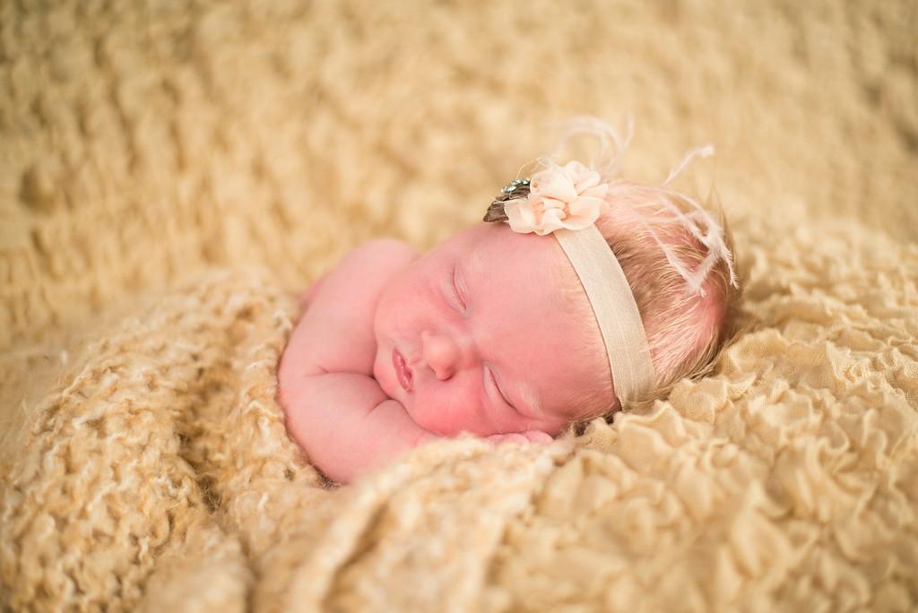 Meyer-Newborn-069