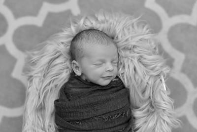 Murphy Newborn-22