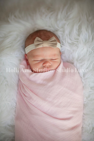 Newhouse Family Newborn 2018