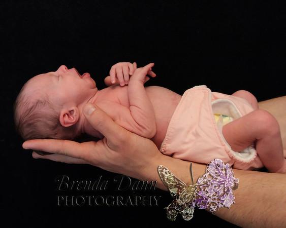 Nicolette Licatese - Newborn Session