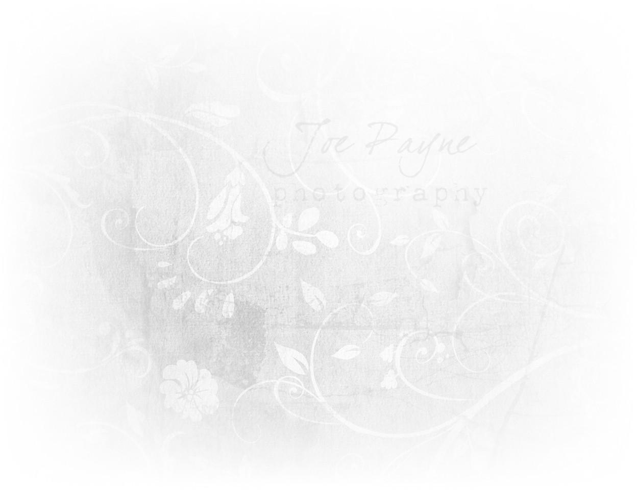 20131218 Joe Payne Background - v1 3 (**Final**)