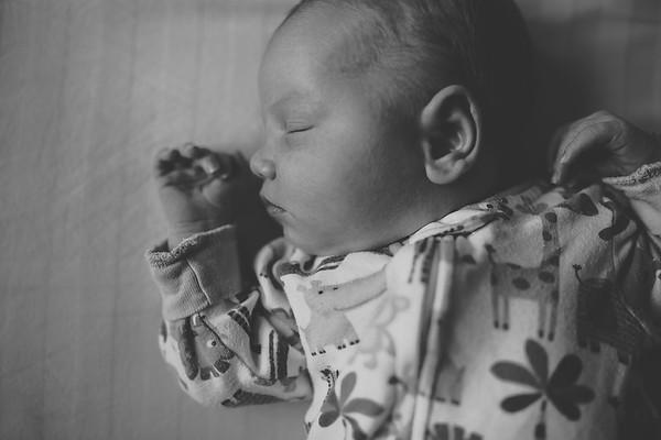 Roland {Newborn}