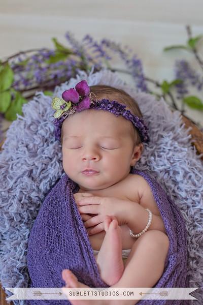 Taryn's newborn 2016