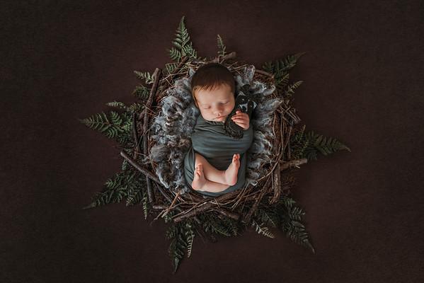 Thomas Newborn 2018