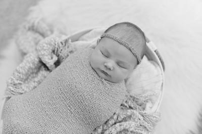 Violet Newborn-16