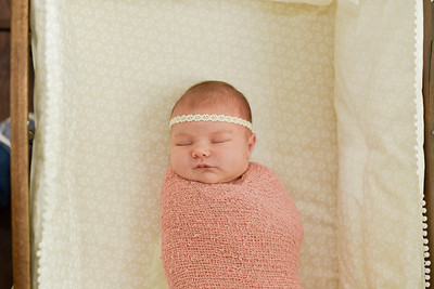Violet Newborn-8