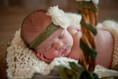 Vivian Newborn Session