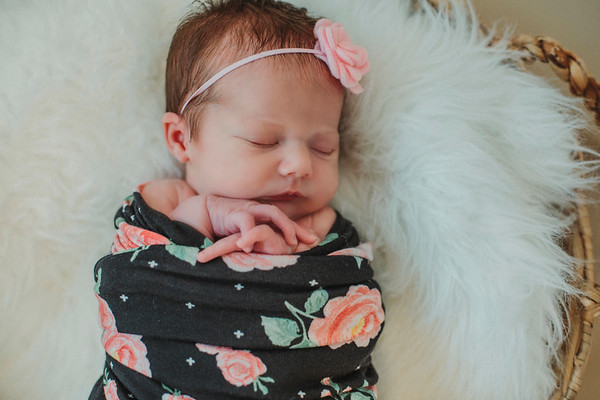 Vivian's Newborn 2017