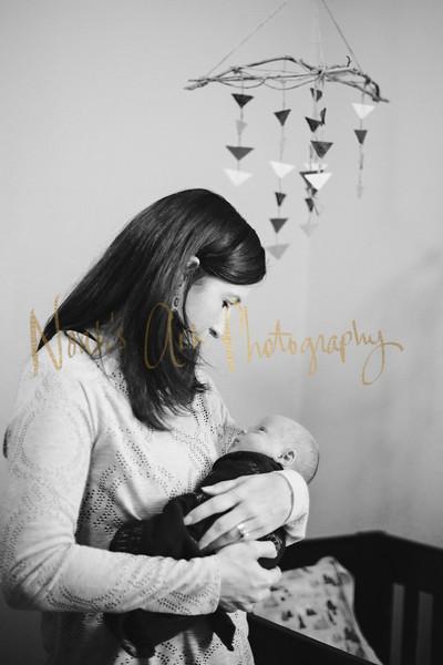 Weston | Newborn