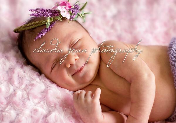 harper lavendar_3951 copy