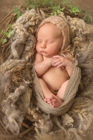 Sebella's Newborn Portraits