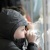 Newburyport: Chad Reardon, 7, of Seabrook, watches the action through the glass at the Graf Rink in Newburyport Monday afternoon. Photo by Ben Laing/Newburyport Daily News Monday December 29, 2008.