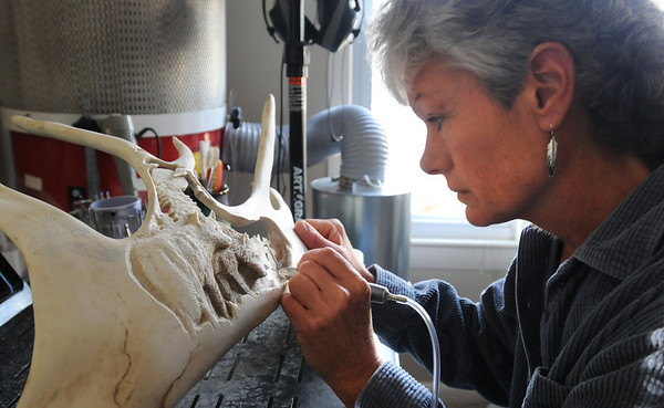 Terri Talas carves a nature scene onto the antler of a caribou in her Newburyport studio.<br /> Photo by Bryan Eaton/Newburyport Daily News  Thursday December 18, 2008