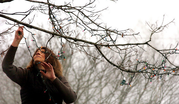 Salisbury:<br /> Debra Maguire hangs Christmas lighting on a maple tree in front of her Ferry Road home in Salisbury on Monday afternoon as she gets ready for the holiday.<br /> Photo by Bryan Eaton/Newburyport Daily News Monday, December 01, 2008