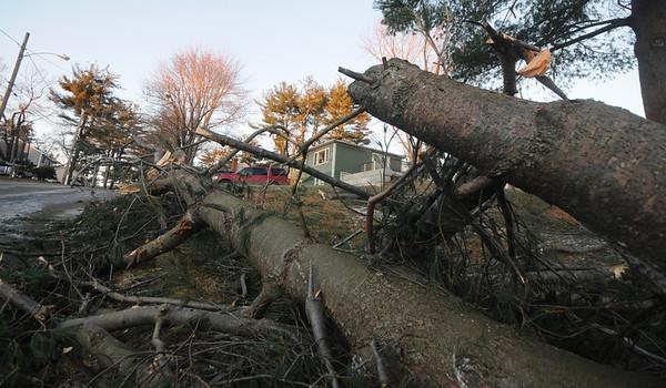 Amesbury: Storm damage on Second Street in Amesbury.<br /> photo by Jim Vaiknoras/Newburyport Daily News. Saturday December 13, 2008