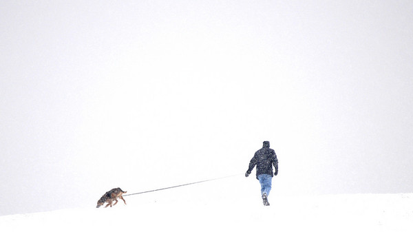 Amesbury: A man walks his dog on Woodsom Farm in Amesbury during the heavy snow Sunday afternoon.photo by Jim Vaiknoras/Newburyport Daily News. Saturday December 20, 2008