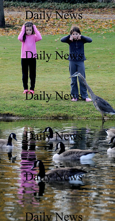 Isabell Schonemann, 8, and her sister Emma, 7, of Newburyport get a close look at a Great Blue heron at the Upper Green in Newbury Sunday afternoon.photo by Jim Vaiknoras/Newburyport  Daily News. Sunday November 8, 2008
