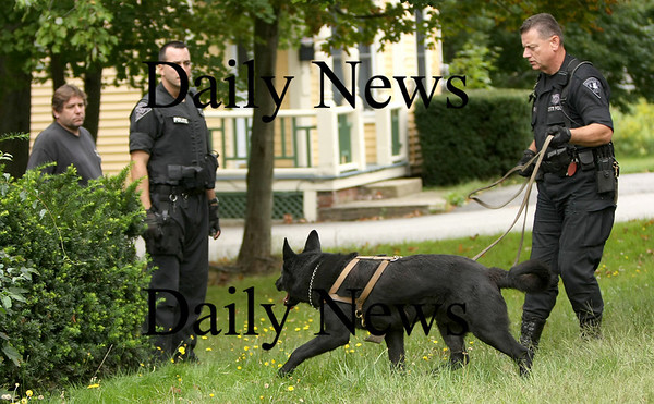 Salisbury: State Police K9 units search for a missing monitor lizard, along with Salisbury Police and Environmental Police, at a house on Elm Street Friday afternoon. Photo by Ben Laing/Newburyport Daily News Friday September 12, 2008.