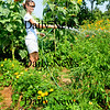 Amesbury: Laurel Ruzicka of Newburyport waters her garden plot at the Amesbury Community Garden. The warm weather will help out the vegetables which had a slow start to the cool, wet start of summer. Bryan Eaton/Staff Photo Newburyport News Monday August 17, 2009.