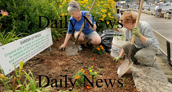 Newburyport: Barbara Hildt, left, and Joanna Hammond weed and put in new flowers in the Garden of Peace on Newbuyport's Boardwalk on Thursday afternoon. The garden is maintained by Women's Action for New Direction (WAND) which the two are members of.  Bryan Eaton/Staff Photo Newburyport News  Thursday August 13, 2009.