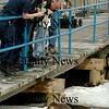 Salisbury:<br /> U.S. Coast Guard Seaman Tatiane Meshoyrer, left, take photographs and others check out a young harbor seal situated on an ice floe near the Fishtale Diner near Ring's Island in Salisbury. Several people were concerned the mammal may be injured and called the Coast Guard to investigate. <br /> Photo by Bryan Eaton/Newburyport Daily News Wednesday, February 25, 2009