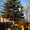 Newburyport:<br /> Workers took down the Christmas tree in Newburyport's Market Square on Monday, a sign that spring is getting closer. Photo by Bryan Eaton/Newburyport Daily News Monday, February 09, 2009