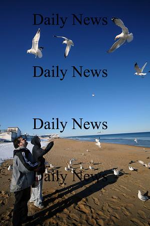 Salisbury; Michael and Mike Chaves of Hudson Ma. feed seagulls on Salisbury Beach Sunday afternoon.photo by Jim Vaiknoras/Newburyport Daily News February 22, 2009