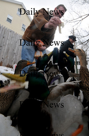 Amesbury: Sky and Gina Emerson of Amesbury feed some very hungry duck at the Millyard in Amesbury Sunday afternoon.photo by Jim Vaiknoras/Newburyport Daily News. Feburary 7, 2009
