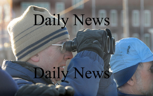 Newburyport:Newburyport resident Paul Davison helps out with the annual Eagle Count at Cashman Park Friday. photo by Jim Vaiknoras/Newburyport Daily News. Friday January 9, 2008