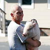 Newburyport: The apparent owner of two escaped pigs is relieved when they were safely recovered on Water Street in Newburyport. Photo by Ben Laing/Staff Photo