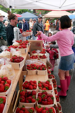 Newburyport: Fresh strawberries, picked earlier in the morning at Applecrest Farm, were available Sunday morning at the farmer's market at the Tannery in Newburyport. Photo by Ben Laing/Staff Photo