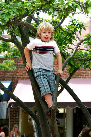 Newburyport: Sawyer Savlen, 5, of Gloucester, climbs a tree near the Tot Lot on Inn Street Tuesday afternoon. Photo by Ben Laing/Staff Photo