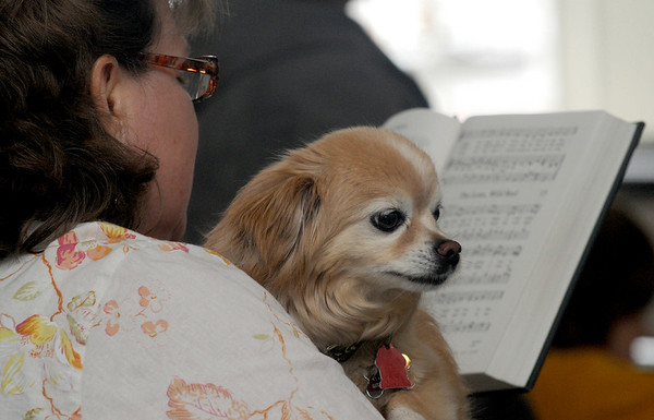 Newburyport: Rochelle Perry-Paltine holds Wagner as she sings a hymn at the Blessing of the Animals at the First Religious Society in Newburyport Sunday morning. Jim Vaiknoras/Staff photo