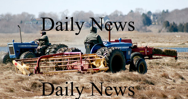 Newbury: Two tractors begin the process of haying the salt marsh near the Plum Island Turnpike monday morning, despite the cold temperatures and strong winds. Photo by Ben Laing/Staff Photo