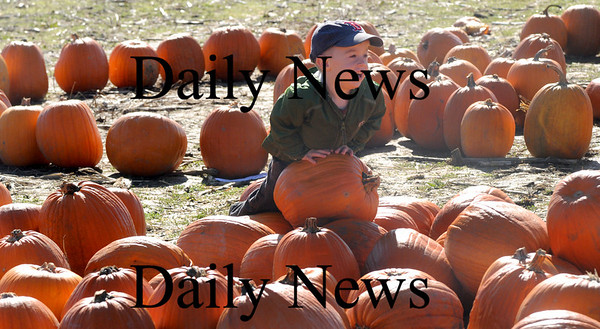Amesbury: Mason Lind, 3, of Haverhill checks out the pumpkins at the Cider Hill Farm. He was at the farm to support  his mom Meghan who was running the 2nd annual Cider Marsh 5k Orchard run. Jim Vaiknoras/Staff photo