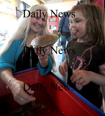 Newbury: Marine biologist Ellen Goethel shows Sara Zeller, 4, a live scallop at Wildlife Celebration Day at the Parker River Wildlife Refuge Headquarters Saturday. Jim Vaiknoras/Staff photo