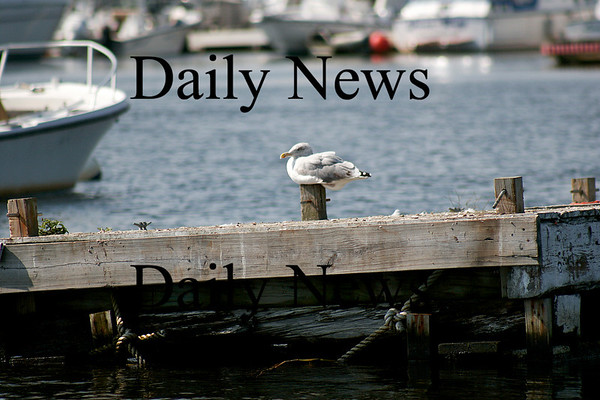 Salisbury: A seagull has a prime seat to watch the commings and goings of the boats on the Merrimack River Monday afternoon. Photo by Ben Laing/Staff Photo