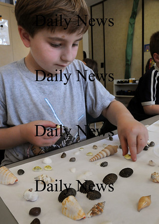 Newburyport: Kindergartner Ross Meinhart, 5, matches seashells in Sherry Herzig's class at the Brown School in Newburyport on Wednesday. The children, learning about the ocean, will be heading to a tidepool at Sandy Point Reservation on Friday for real-life study. Bryan Eaton/Staff Photo Newburyport News Wednesday 23, 2009.