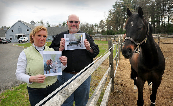 Georgetown: Rosebrook Farm owners Cindi Wylie, and Steve Schubert show photos of two Westphalian horses they've bought for their Georgetown farm which are still in Germany due to the disruption of air travel from the volcano in Iceland. Bryan Eaton/Staff Photo