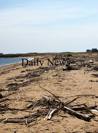 Newburyport: Driftwood and other debris litter the beach at Plum Island Point. Photo by Ben Laing/Staff Photo