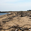 Newburyport: Driftwood and other debris litter the beach at Plum Island Point. Photo by Ben Laing/Staff Photo