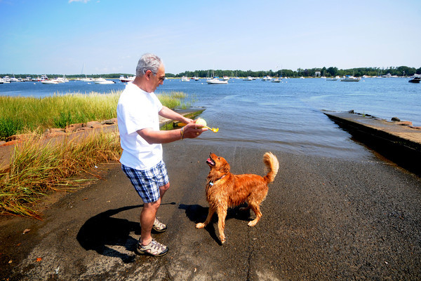 Newburyport: Mike Taccone of Newburyport plays ball with his dog Rigel, who was all too happy to get wet, at Cashman Park Sunday afternoon. Jim Vaiknoras/Staff photo