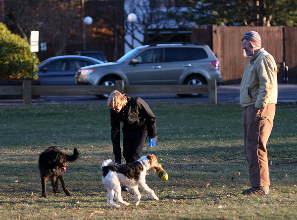 Newburyport: Linda Harding and Luka Celibic, both of Newburyport, let their dogs play at Cashman Park Wednesday afternoon. Photo by Ben Laing/Staff Photo