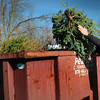 Newbury: Newbury firefighter Jonathan Kelley tosses a Christmas tree into one of two roll-off containers at the station on Morgan Avenue. Residents can drop off their trees there as well and will be used for the Old Newbury Christmas Tree Bonfire Bash in two weeks. Bryan Eaton/Staff Photo