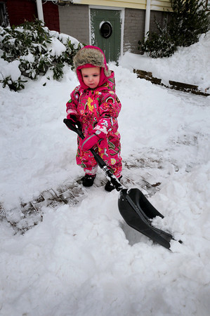 Newburyport: Ellie Sears, 2, of Newburyport did her best to help the family shovel out their Fair Street home on Monday morning. Bryan Eaton/Staff Photo