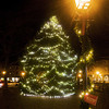 Newburyport: The tree in Market Square in Newburyport is a familiar and festive site. Jim vaiknoras/Staff photo