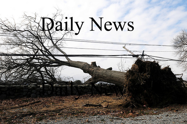 Newbury: A large tree on High Road in Newbury, next to Tendercrop Farms, fell during last nights storm, pulling down the power lines and several telephone poles.  Photo by Ben Laing/Staff Photo