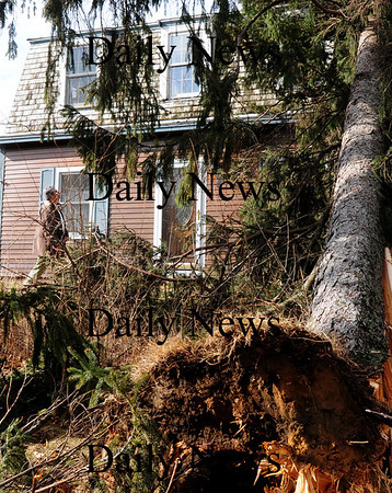 Salisbury: Don Paquette checks out his 28 Ferry Road home in Salisbury after a tree was uprooted and fell onto the roof. One other tree was snapped and another uprooted as well laying to the right of the house. Bryan Eaton/Staff Photo