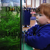 Amesbury: Michael Sekelsky, 2, of Amesbury looks at the fish in the aquarium in the Children's Room at the Amesbury Public Library on Wednesday afternoon. He was getting some books with his mother, Alison, and brother, Mather, 8 months. Bryan Eaton/Staff Photo